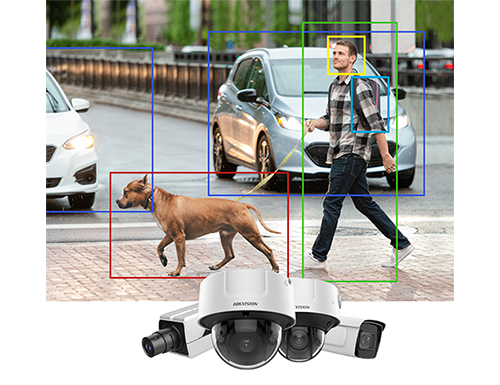 video surveillance example with boxes around a dog and a man near some cars